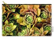 Hens And Chick Plants Carry-all Pouch
