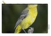 Hooded Oriole Female Carry-all Pouch