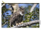 Hoot Hoot Carry-all Pouch