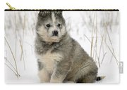 Husky Dog Puppy Carry-all Pouch