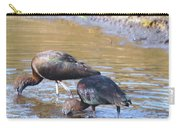 Ibis Carry-all Pouch