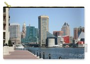 Inner Harbor Carry-all Pouch