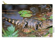 Juvenile American Alligator Carry-all Pouch