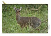 Kirks Dik-dik Carry-all Pouch