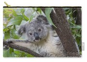 Koala Joey Australia Carry-all Pouch