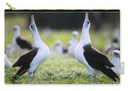 Laysan Albatross Courtship Dance Hawaii Carry-all Pouch