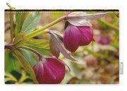 Lenten Roses  Carry-all Pouch