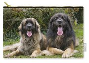 Leonberger Dogs Carry-all Pouch