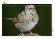 Lincoln Sparrow Carry-all Pouch