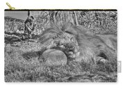 Lion In Repose Carry-all Pouch