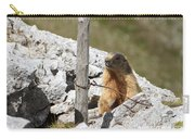 Little Marmot Carry-all Pouch