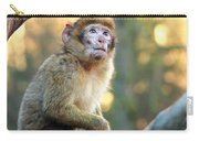 Little Monkey Carry-all Pouch
