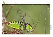 Long-horned Katydid Tettigonid Carry-all Pouch