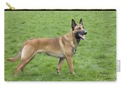 Malinois, Belgian Shepherd Dog Carry-all Pouch