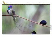 Marvelous Spatuletail Carry-all Pouch