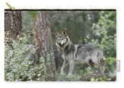 Mexican Grey Wolf 1 Carry-all Pouch