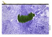 Midbody In Mitosis, Tem Carry-all Pouch