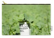 Money And Good Luck Carry-all Pouch