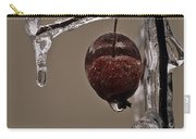 Nature's Candy Apple Carry-all Pouch by Tony Beck