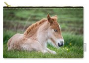 New Born Foal, Iceland Purebred Carry-all Pouch