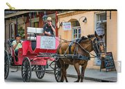 New Orleans - Carriage Ride Carry-all Pouch