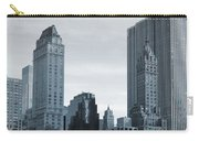 New York City From Central Park Carry-all Pouch