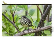 Northern Water Thrush Carry-all Pouch