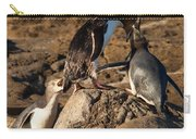Nz Yellow-eyed Penguins Or Hoiho Feeding The Young Carry-all Pouch