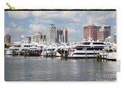 Palm Beach Docks Carry-all Pouch