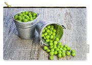 Peas Carry-all Pouch