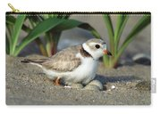 Piping Plover Charadrius Melodus Carry-all Pouch