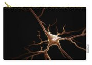 Pyramidal Neuron Carry-all Pouch