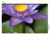 Radiance Carry-all Pouch by Sharon Mau