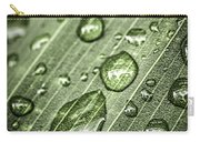 Raindrops On Green Leaf Carry-all Pouch by Elena Elisseeva