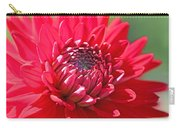 Red Dahlia Flower Carry-all Pouch