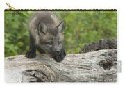 Red Fox Kit Carry-all Pouch by Sandra Bronstein