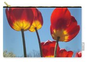 Red Tulips With Blue Sky Background Carry-all Pouch