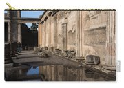 Reflecting On Pompeii Carry-all Pouch