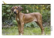Rhodesian Ridgeback Puppy Carry-all Pouch