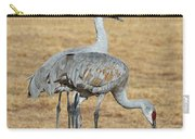 Sand Hill Cranes Eating Carry-all Pouch