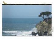 Sea Coast Carry-all Pouch