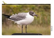 Seagull Standing On A Notice Sign Carry-all Pouch by Alex Grichenko