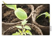 Seedlings Growing In Peat Moss Pots Carry-all Pouch by Elena Elisseeva