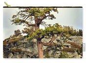 Sierra Landscape Carry-all Pouch