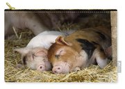 Sleeping Hogs  Carry-all Pouch