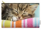 Sleepy Kitten Carry-all Pouch