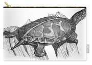 Southern Painted Turtle Carry-all Pouch