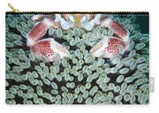 Spotted Porcelain Crab In Anemone Carry-all Pouch