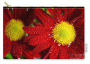 Spring Blossom Carry-all Pouch by Carlos Caetano