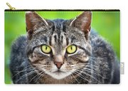 Stray Cat Stare Carry-all Pouch